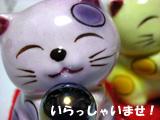 通販ブログのマスコットの「み~」です。ヨロシクね。
